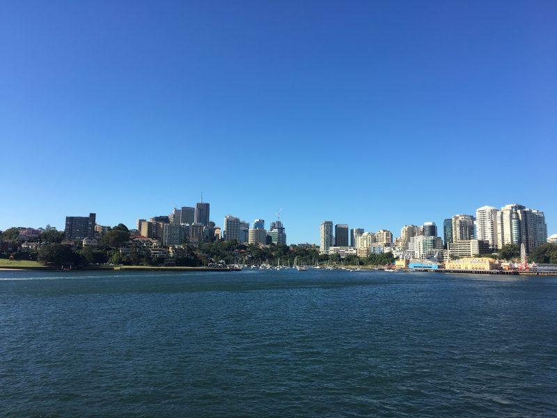 シドニー湾クルーズ