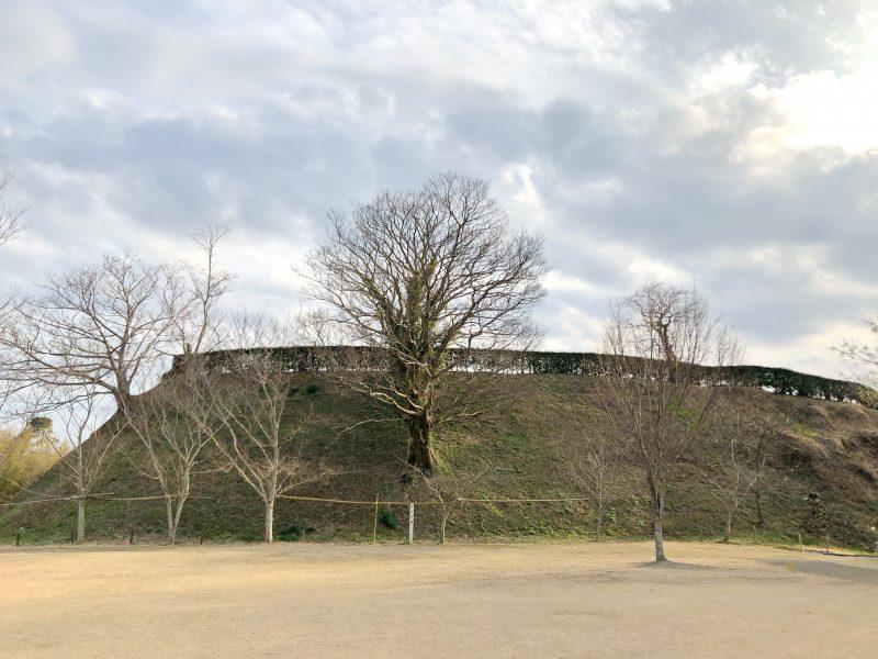 北の丸から見る横須賀城本丸跡