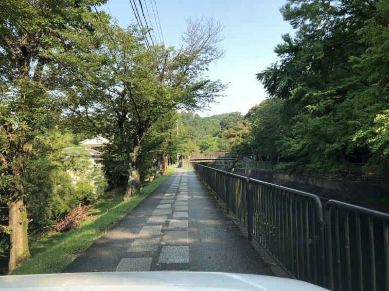 本圀寺への道