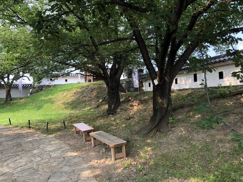 勝竜寺城本丸の東辺土塁