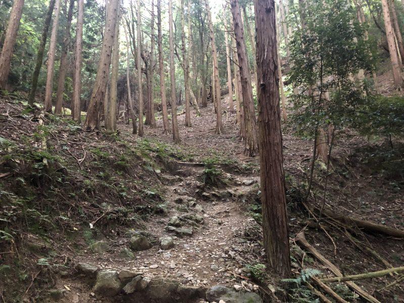 黒井城登山道