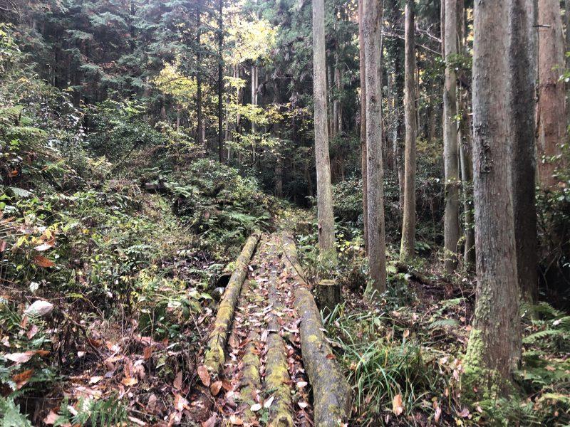 自刃洞への道にある木の橋