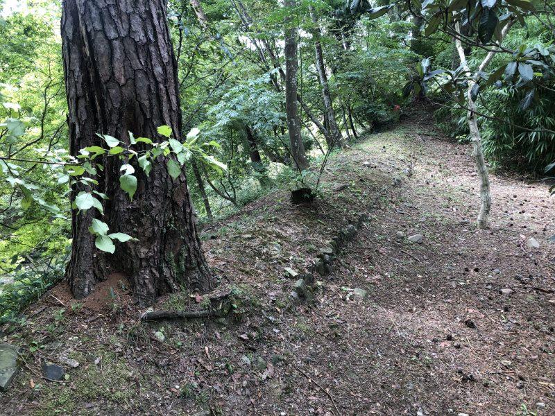 丹波亀山城・土塁と思われる遺構