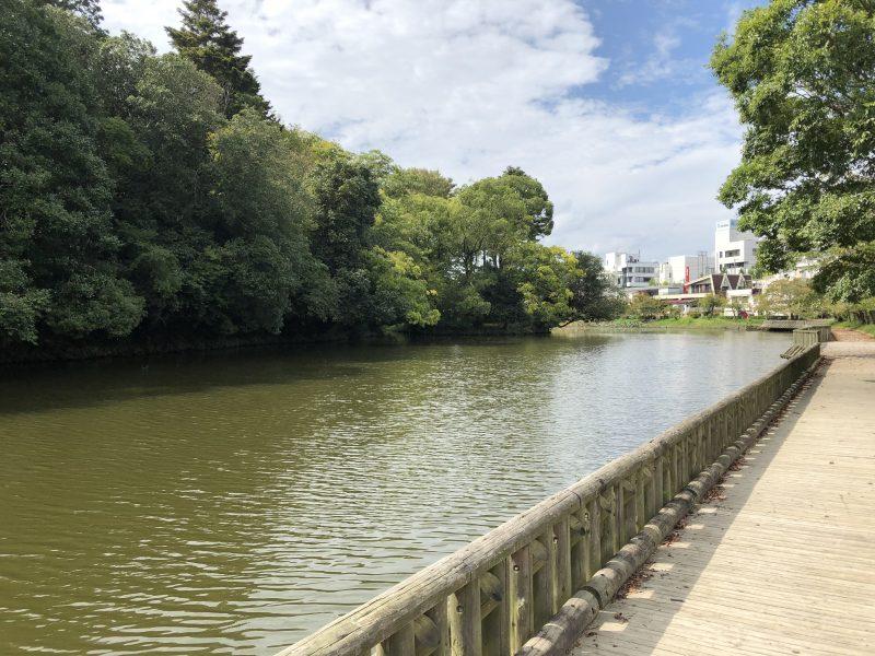 丹波亀山城・北側外堀跡