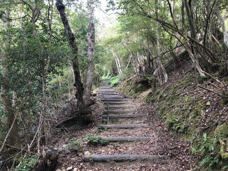 高城山登山道の階段
