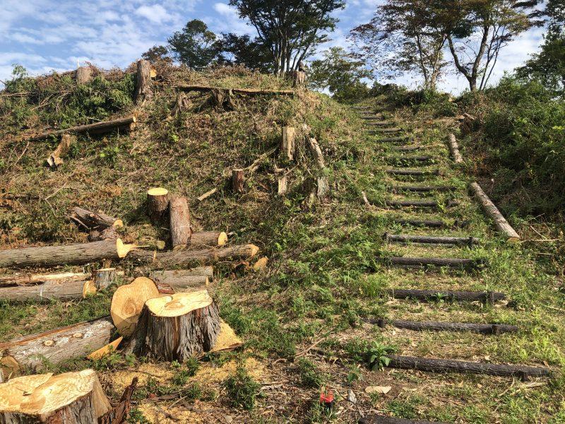 八上城・二の丸の階段